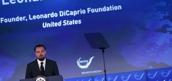 Леонардо ДиКаприо пожертвовал 7 млн в фонд океанов