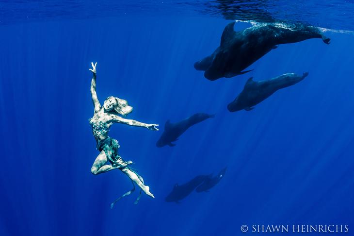 hannah fraser русалка с китами