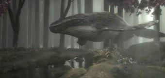 Лесной кит