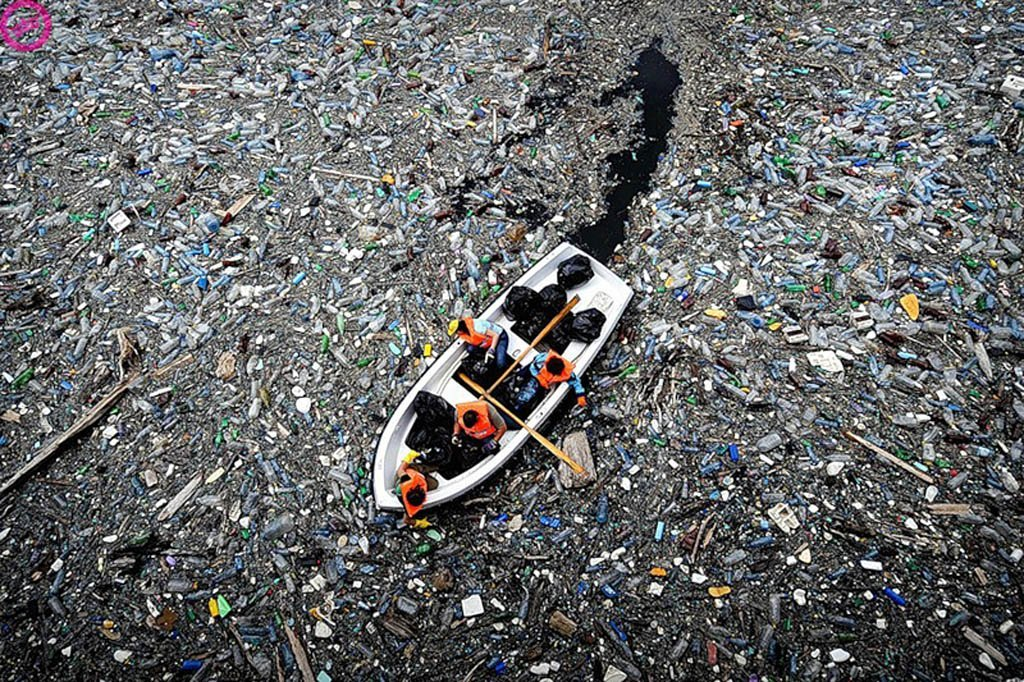 the environmental tragedy of floating plastic waste in the pacific ocean in the film documentary mid
