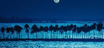 Вечерняя романтика
