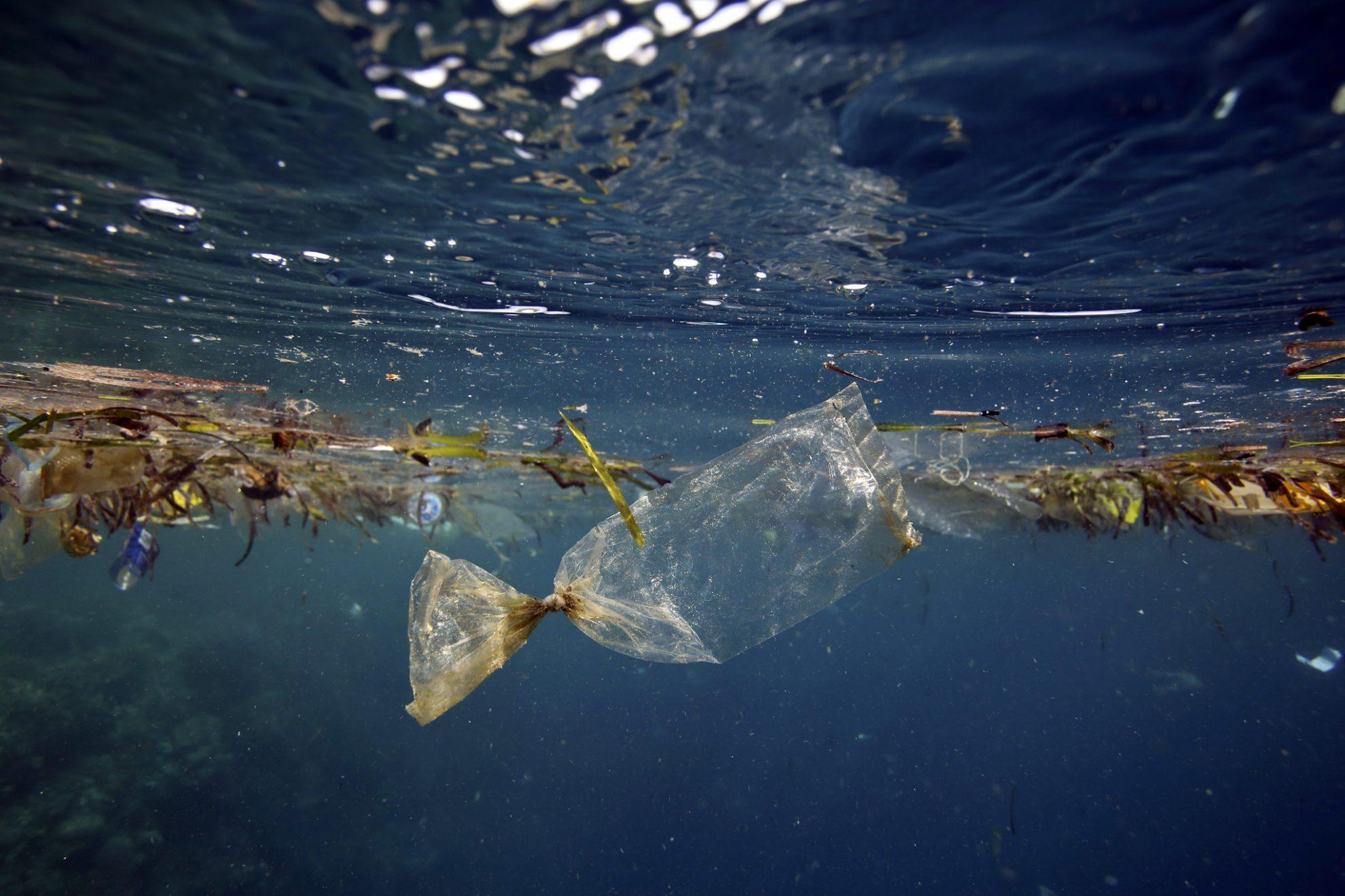 Пластиковые пакеты, самый распространенный вид мусора в океане.