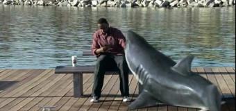Акулы и никотин
