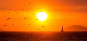 Россия Морская — фотографии участников.