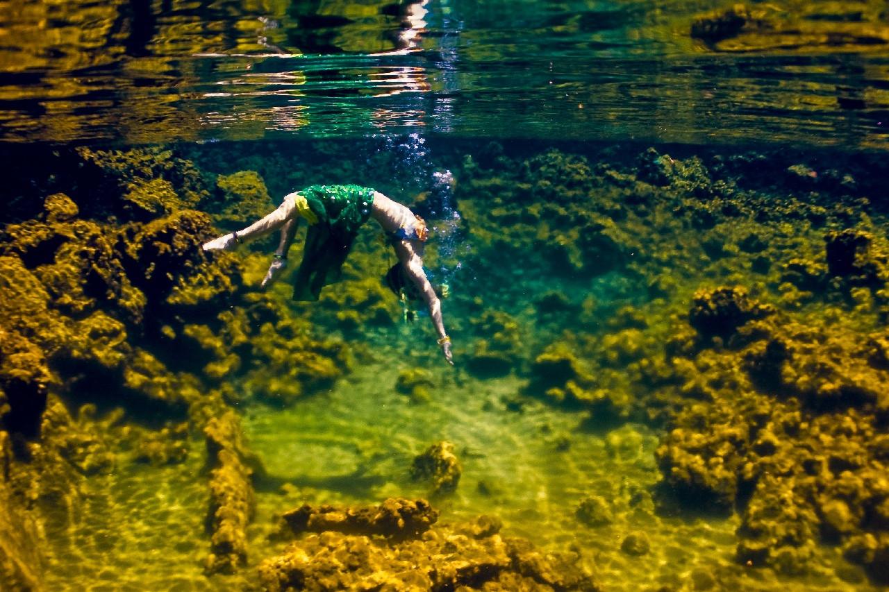 Подводный танец. Фото  Sarah Lee
