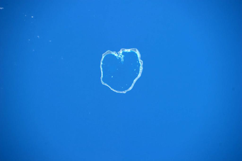вид из космоса на атолл Эбон (Маршаловы острова, Тихий океан)