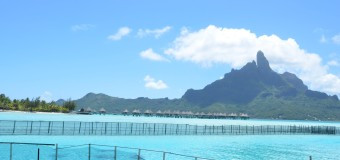 Полинезия – мечта, которая должна осуществится. Часть I.