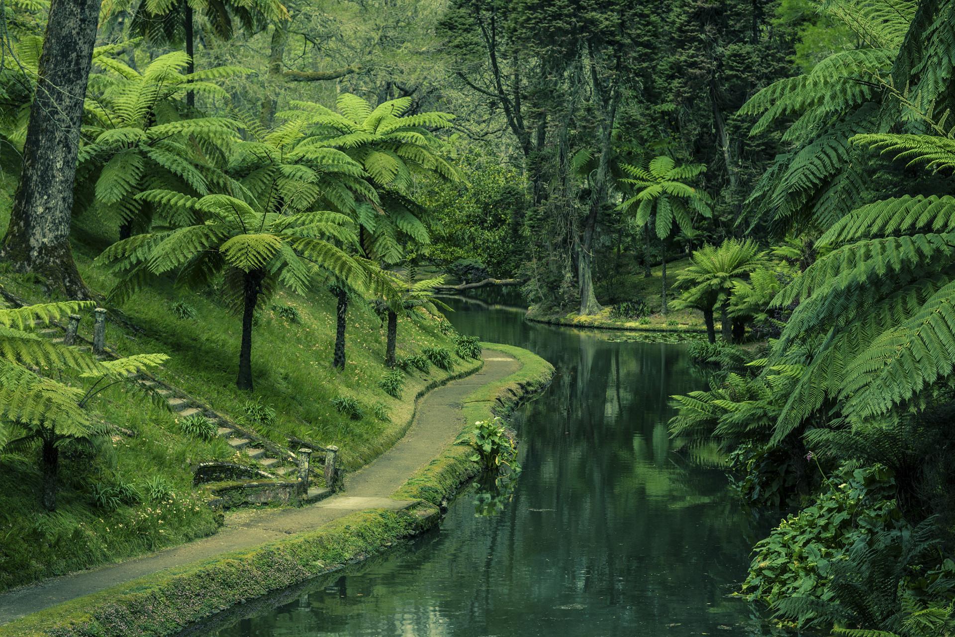 Второе название острова Сан-Мигеля - Зеленый остров.