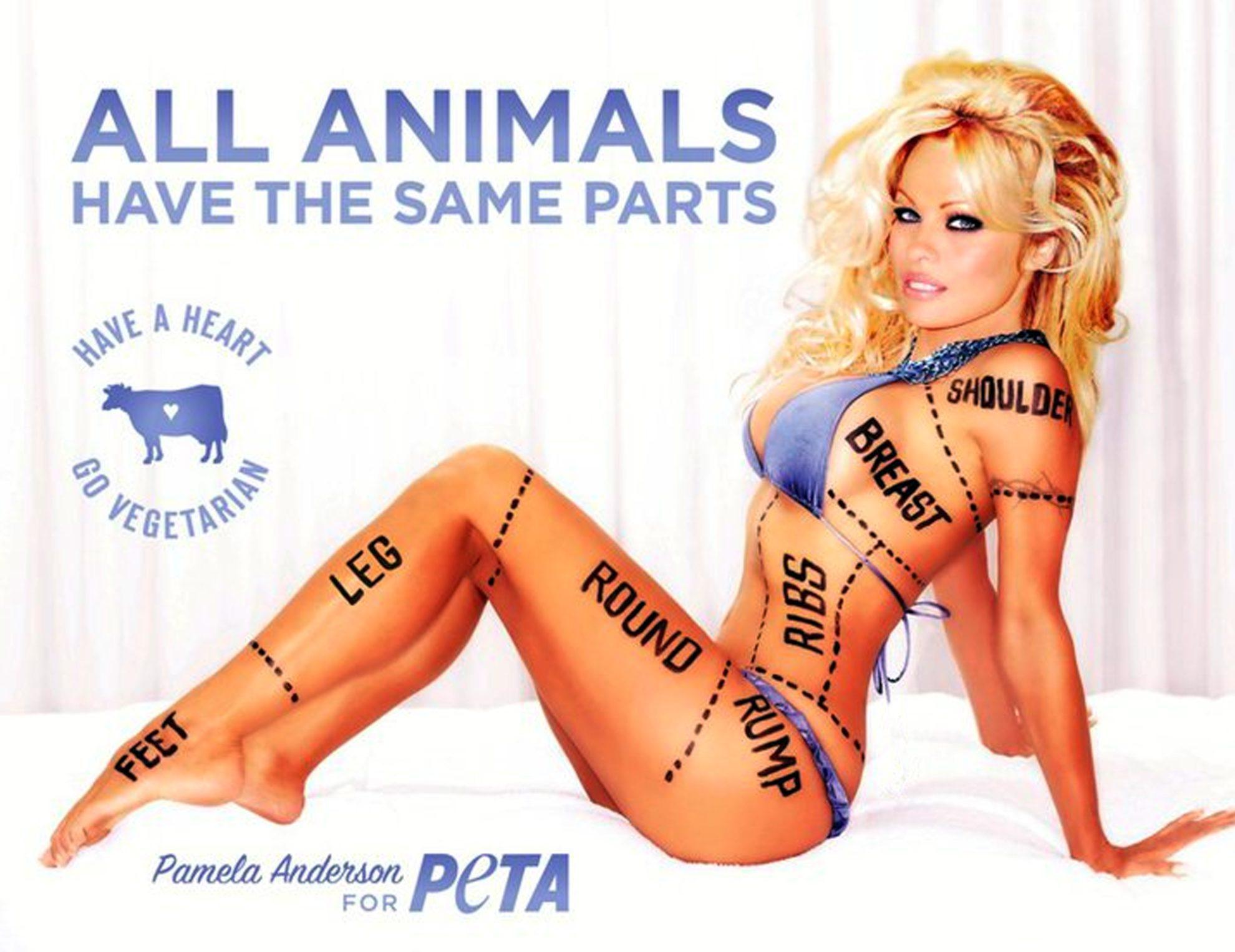 Памела Андерсон выступает за защиту животных всеми доступными ей способами.
