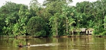 Знакомство с амазонками