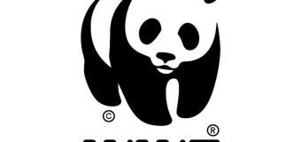 54 года Всемирному фонду дикой природы