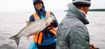 Новый эпизод передачи «Рыбий ЖЫР» скоро в эфире OceanTV!