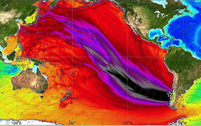 Распространение цунами в Тихом океане (самые разрушительные волны - чёрного и красного цвета) после землетрясения 1960 г. Карта подготовленная американским Национальным управлением океанических и атмосферных исследований (NOAA)