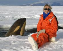 Национальное управления океанических и атмосферных исследований (NOAA), фотоотчет о работе.