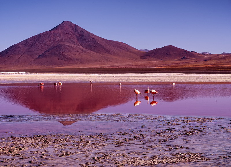 Красное озеро в Боливи