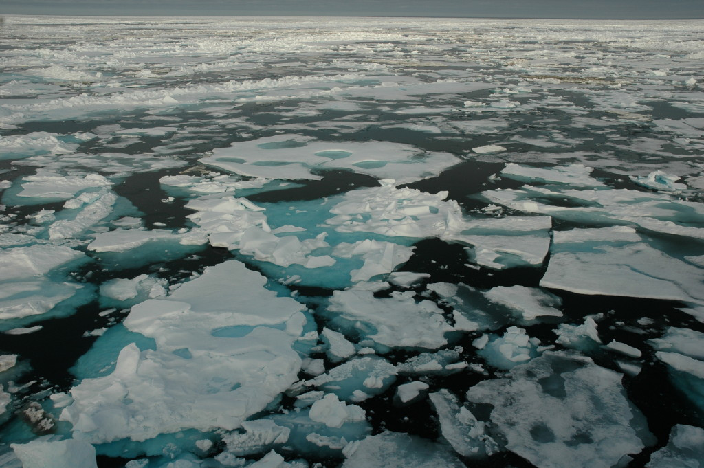 Спутниковые наблюдения подтверждают: Арктический лед становится тоньше и охватывает все меньшую поверхность // фото:  Bonnie Light, University of Washington.