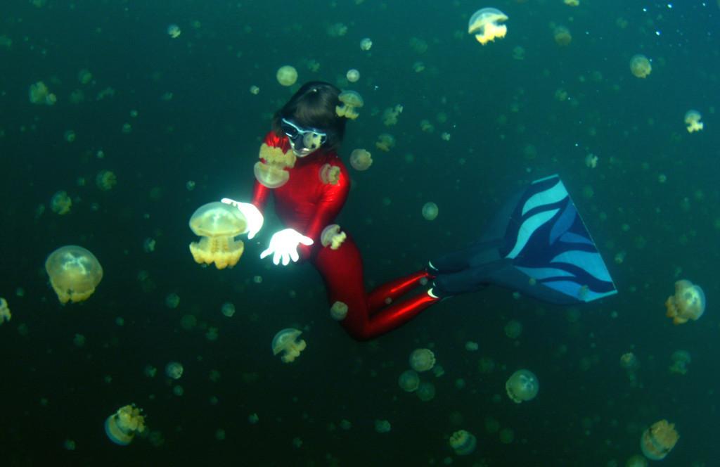 В знаменитом Озере Медуз (Jellyfish Lake)