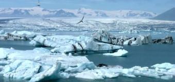 Арктический лёд постепенно станет сезонным явлением