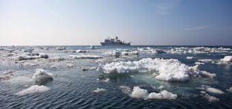 Учеными обнаруженно более 500 новых морских видов