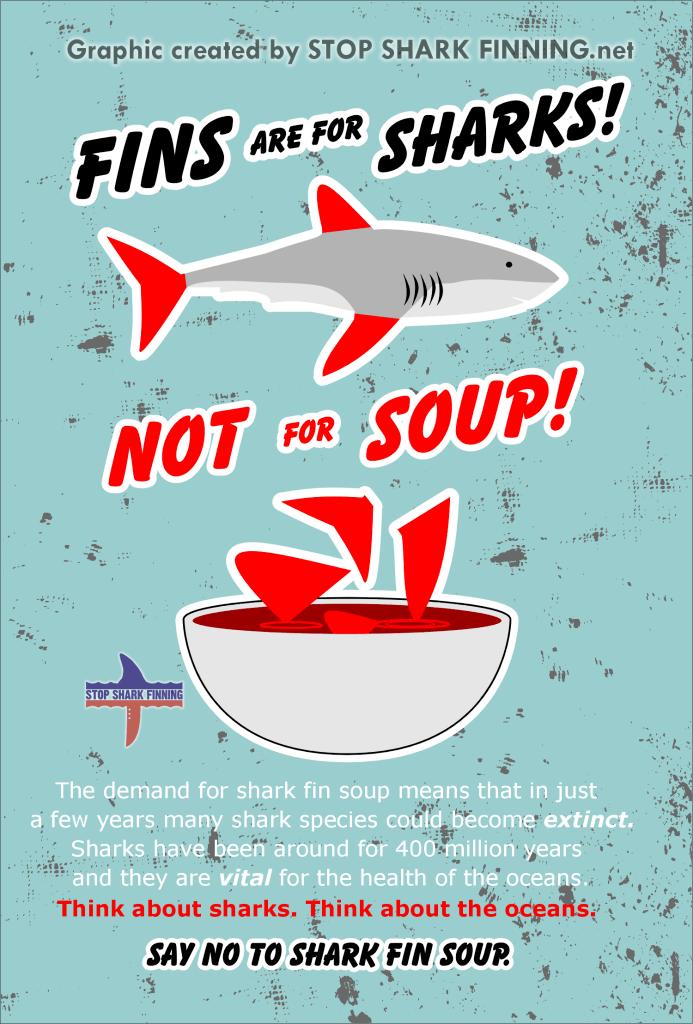 Плакат STOP Shark Fin soup