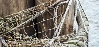 В США взялись за легализацию рыбного промысла