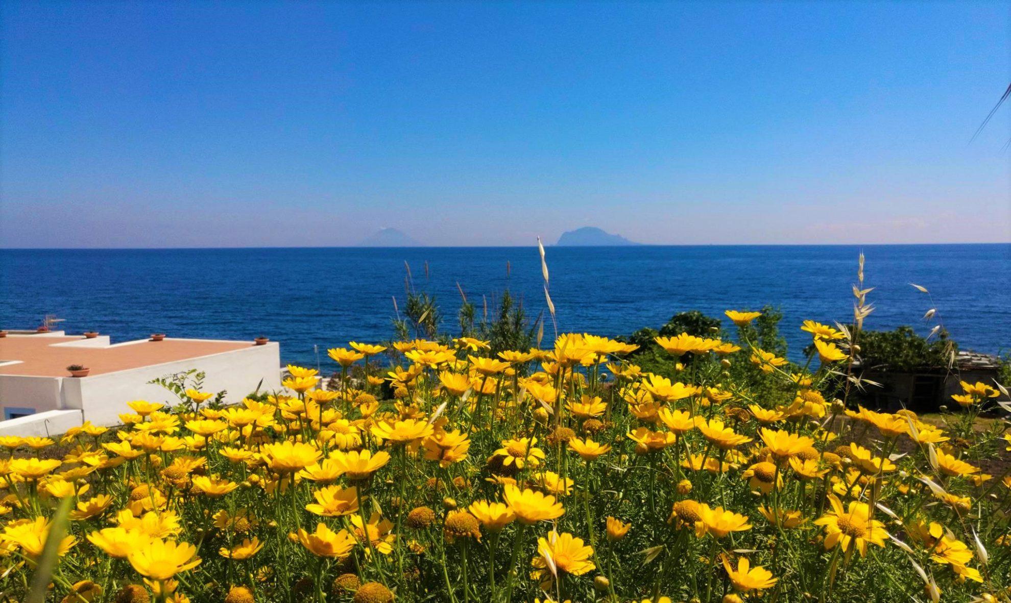Цвета Сицилии желтые и голубые. Вид на остров Стромболи (вдали) и панераи с острова Салина. Сицилия. регата OML 216. Фото А. Подколзин