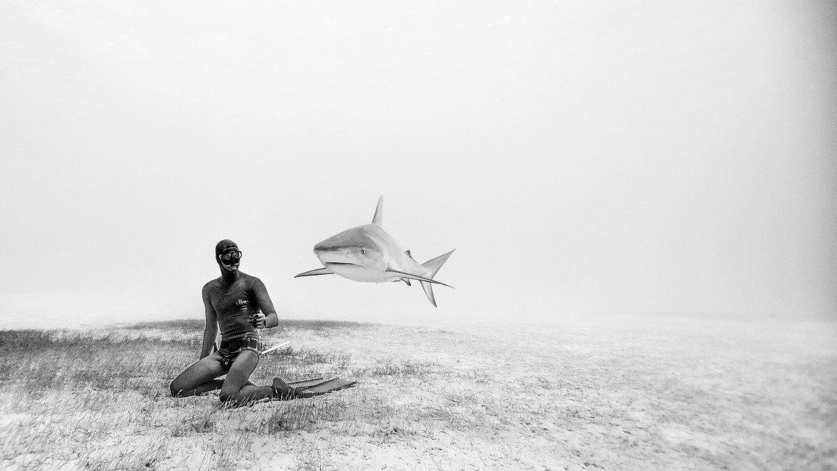 Подводная фотосъемка с акулами