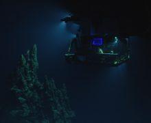 Обнаружен источник таинственного сигнала из Марианской впадины