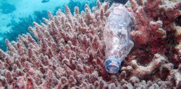 Кто загрязняет океан пластиком?