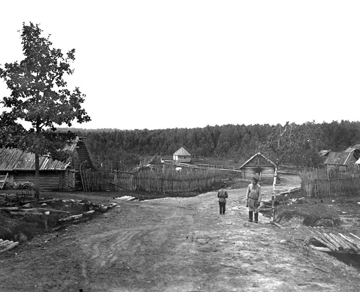 Деревня Волгино. к. XIX в. Тверская губерния, д. Волгино.