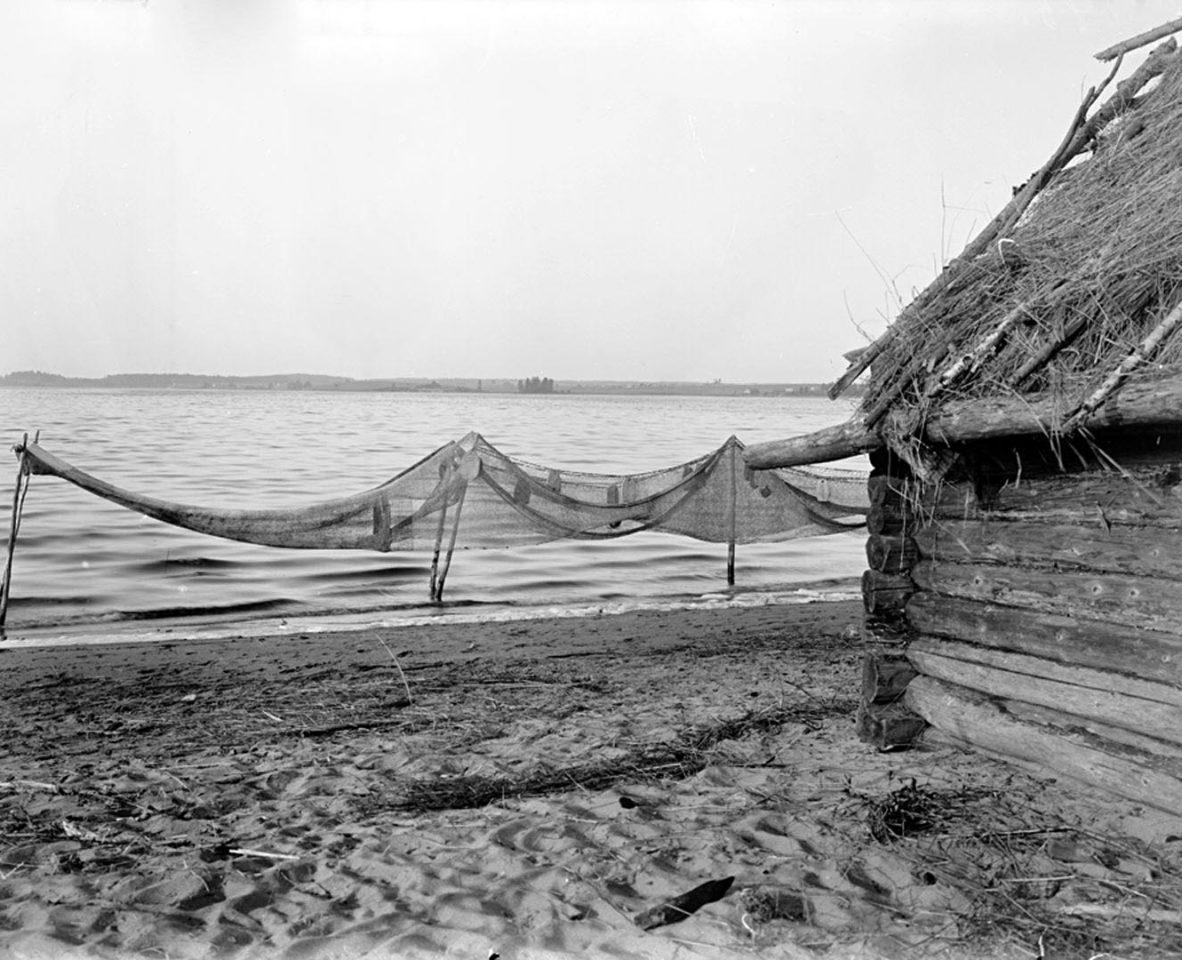 Вид Волги и Стержского озера. 1903 г. Тверская губерния