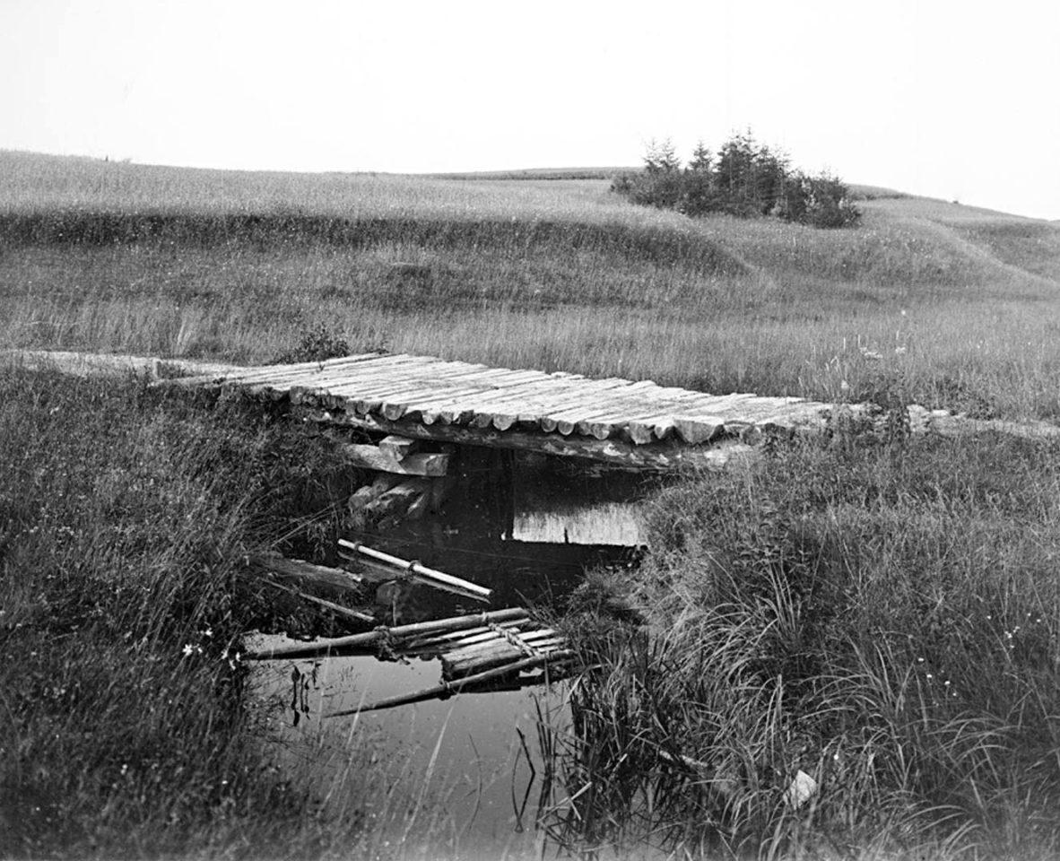 Вид озера Вершито на третьей версте от истока реки 1903 г. Тверская губерния.