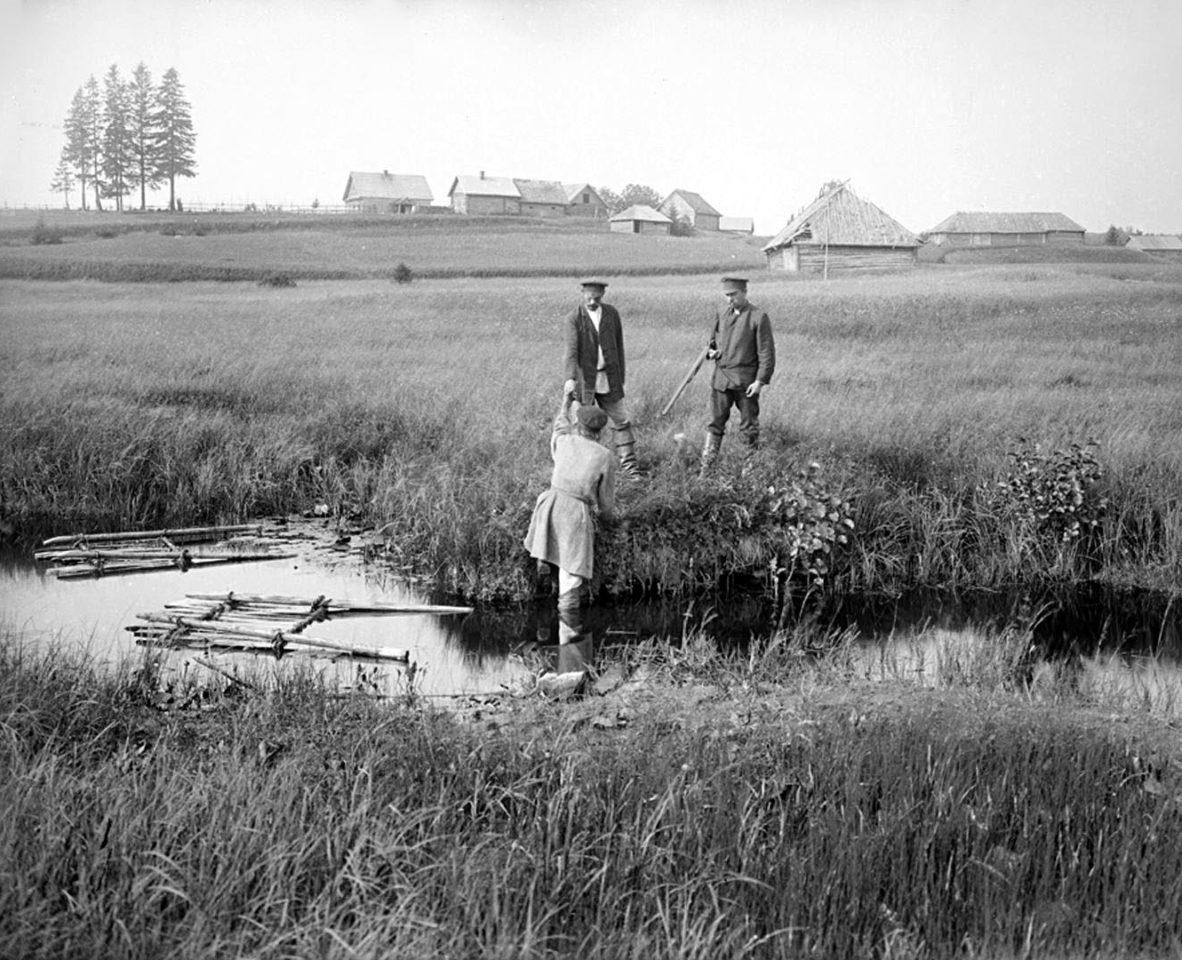 Вид реки Волги на четвертой версте, вид прудов. 1903 г. Тверская губерния.