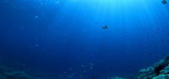 Морское дно опускается все ниже: данные новых исследований