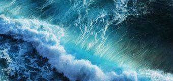 Фото дня // Blue Ocean
