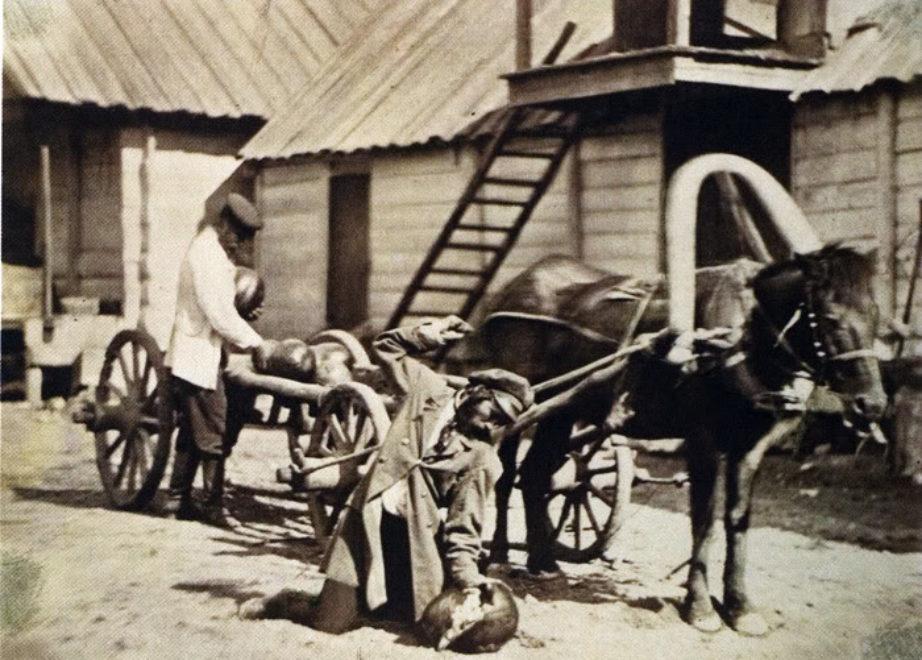 Казаки сносят арбузы. 1875-1876 год.