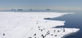 Задержка решения по морским охраняемым районам тормозит создание обещанной сети