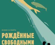 В свободном доступе появился фильм о черном рынке торговли морскими млекопитающими