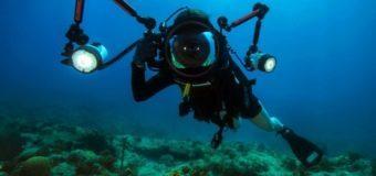 Загадочные структуры нашли на дне Тихого океана