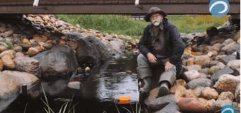 Смотрите эфир радио «МедиаМетрикс» о проекте «Великие реки России»