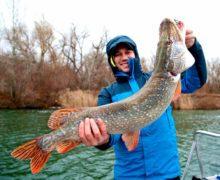 Рыболовы и охотники встречаются на Дону