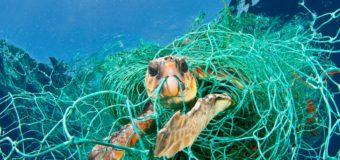Европейский парламент проголосовал за запрет одноразового пластика