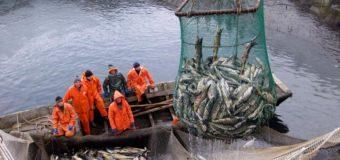 Рыболовство: социальное измерение как фактор развития территорий