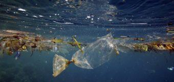 На дне глубочайшей впадины Мирового океана обнаружили пластиковый мусор