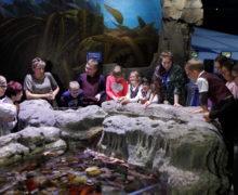 Океанариум, доступный для каждого ребенка