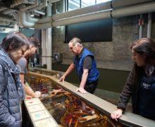 Приморский океанариум и Океанариум Монтерей Бэй подписали Соглашение о сотрудничестве