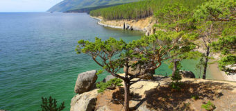 Бурятский учёный открыл новый для науки вид на Байкале