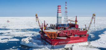 Учёные «Русской Арктики» обнаружили уникальные полезные микроорганизмы