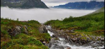 Норвежские археологи достанут ладью викингов из-под земли