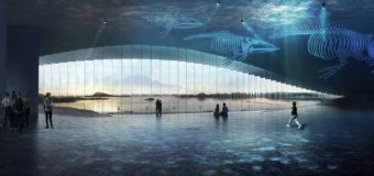 В Норвегии построят музей китов